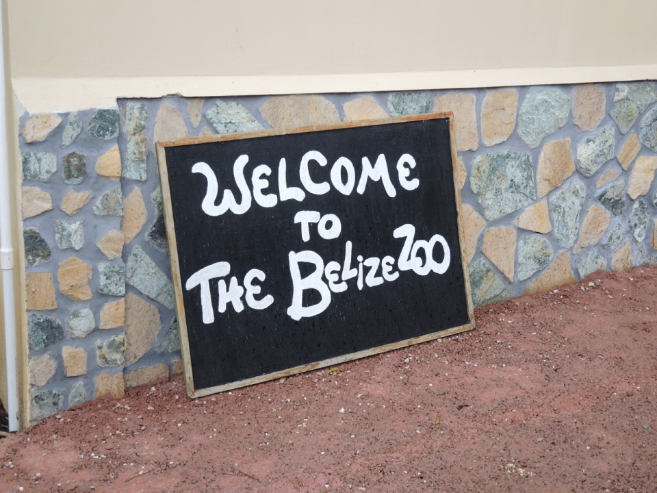 Temporary Welcome Sign at the Belize Zoo.