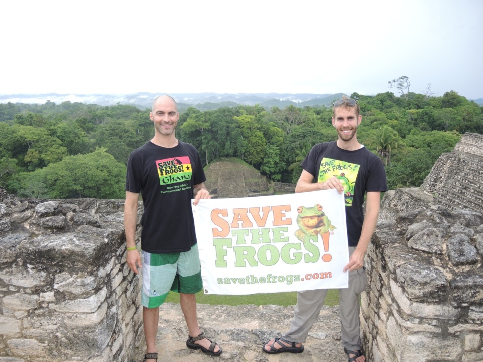Save the Frogs at the top of Complex A - Caracol.