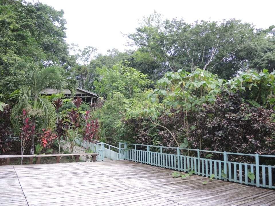 Main deck at Maya Mountain Lodge.