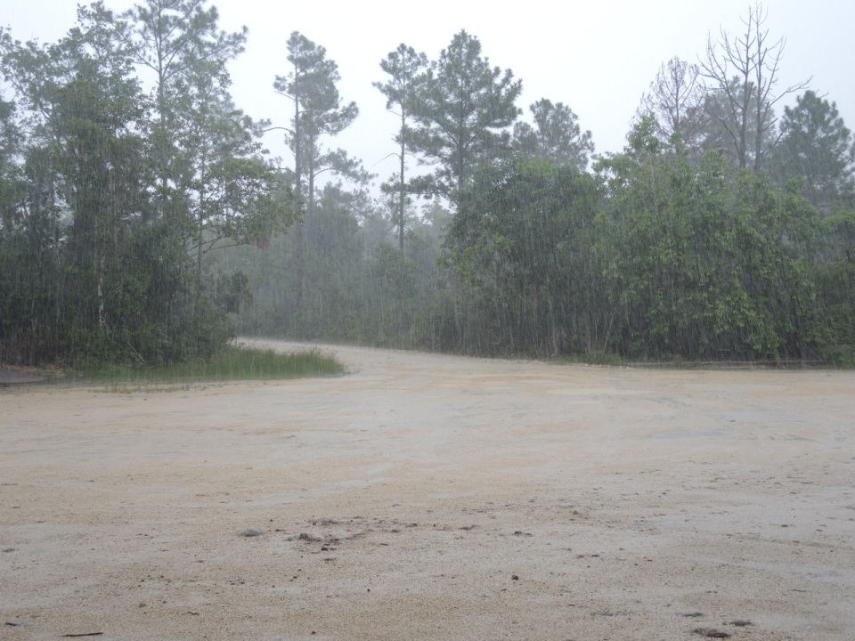The downpour on 11 July.