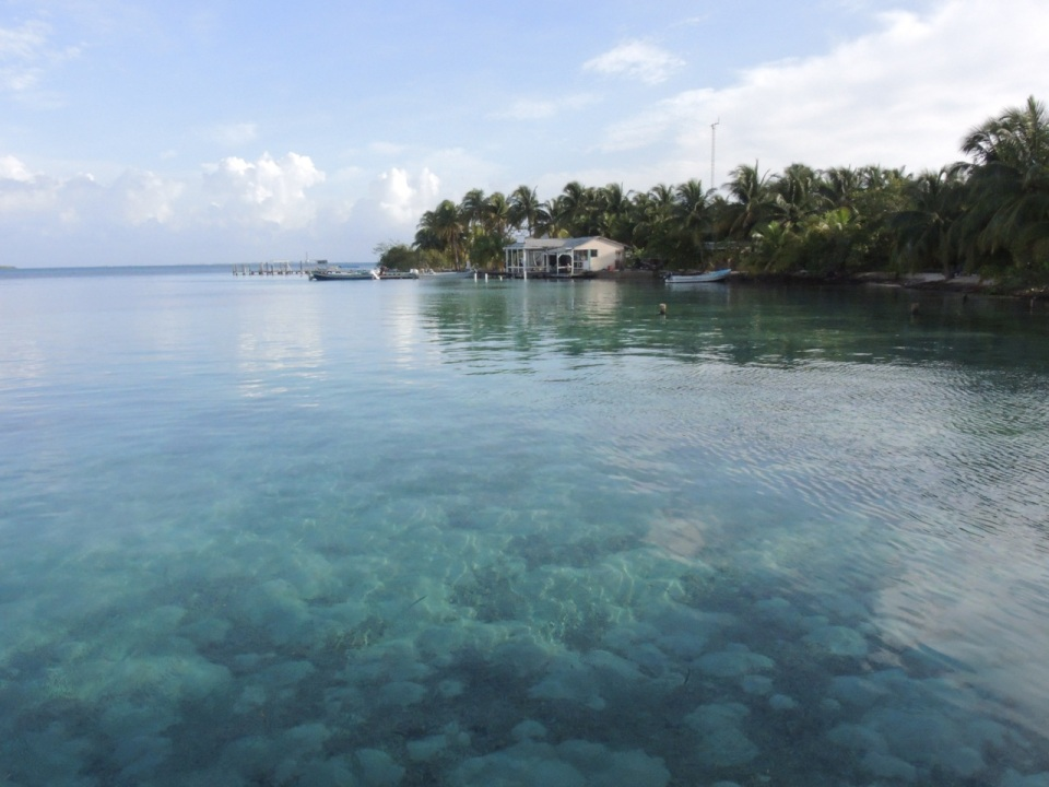 Looking north on South Water Caye.