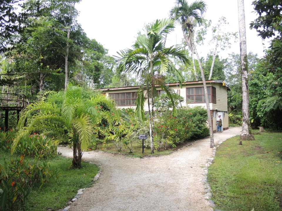 Main commons at the Tropical Education Center.