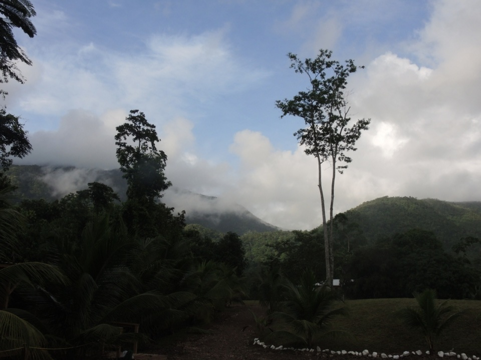 View of the Maya Mountains from TREES.
