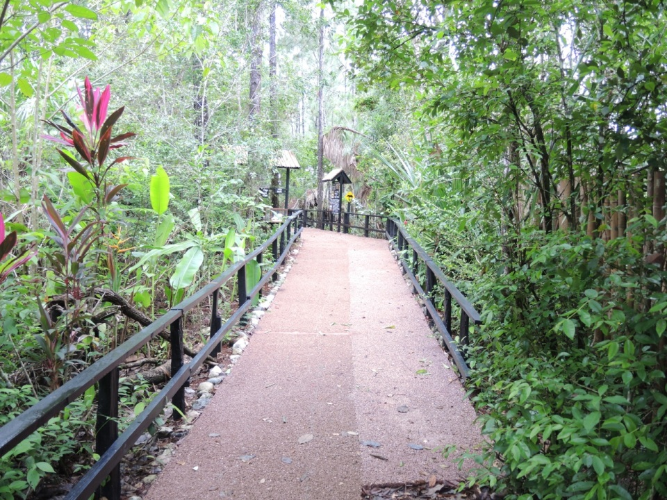 One of the new pathways at the zoo.