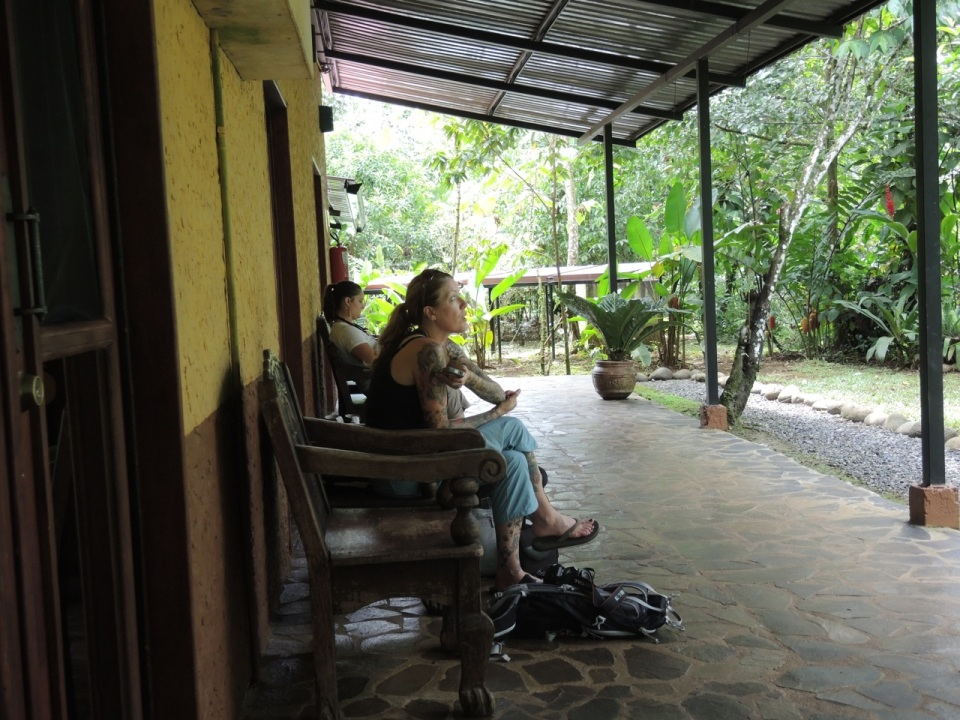 Chair Birding...