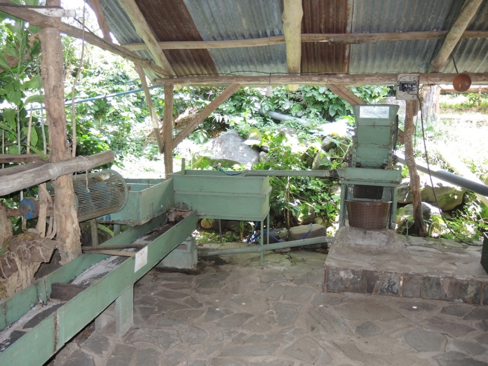 The coffee washer and pitter that Sr Badilla built.
