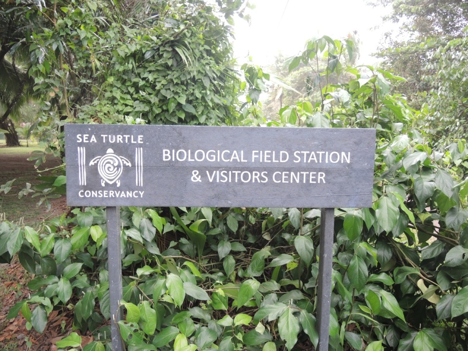 Sea Turtle Conservancy Sign
