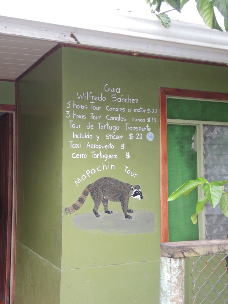 One of the many guiding businesses in Tortuguera...I liked the raccoon on the sign.