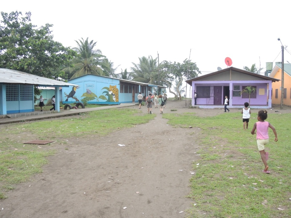 The Tortuguera School.