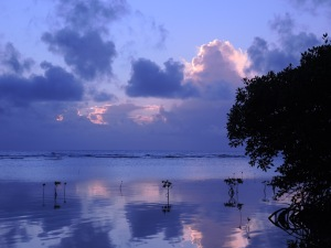 South Water Caye in the morning