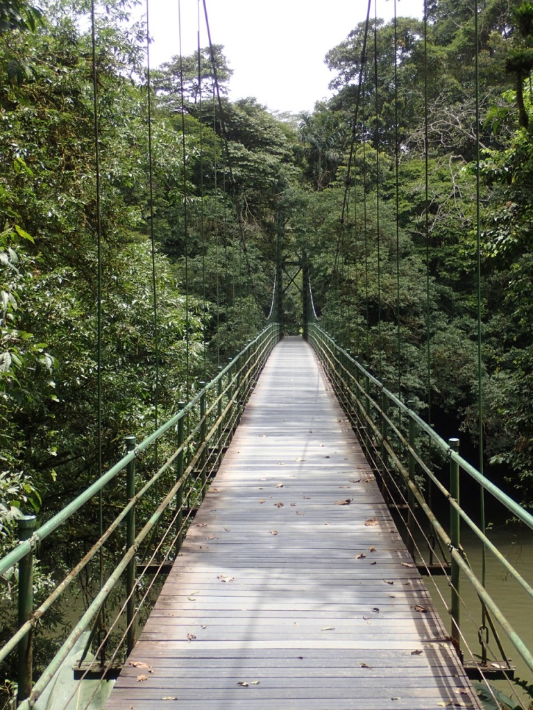 The two sides of the Sarapiqui River are accessed via this hanging bridge.